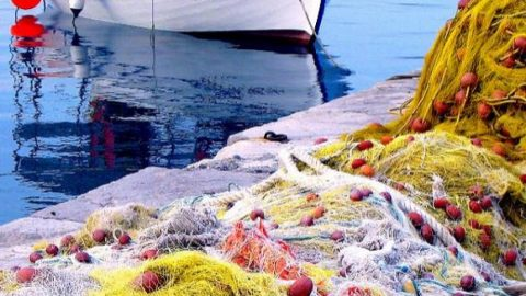 Ο ψαράς έγινε θέμα συζήτησης στην Κυλλήνη και όχι μόνο! Οι φωτογραφίες που κάνουν τον γύρο του διαδικτύου