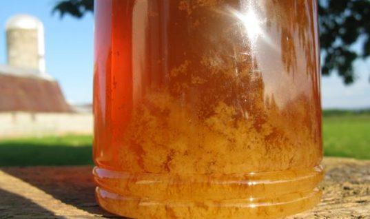Τρομερό tip: Δείτε πως θα κάνετε «λείο» το μέλι που έχει «ζαχαρώσει» (ΒΙΝΤΕΟ)