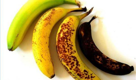 Ποια από αυτές τις μπανάνες είναι καλύτερο να φας; – Δεν ξέρεις και σίγουρα δεν το περιμένεις!