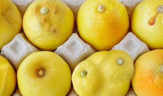 Αυτή η φωτογραφία με λεμόνια δείχνει με ακρίβεια τα συμπτώματα καρκίνου του μαστού