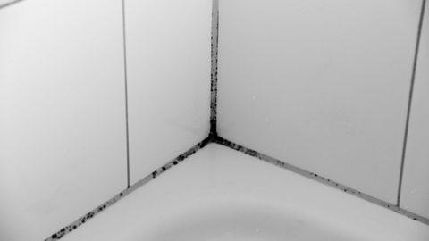 Μούχλα στο μπάνιο: Το κόλπο για να την εξαφανίσετε!