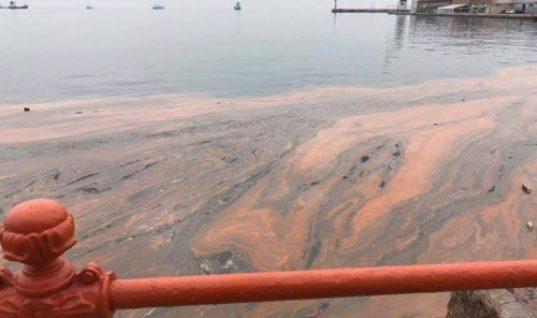 Κοκκίνισαν ξανά τα νερά του Θερμαϊκού κόλπου στη Θεσσαλονίκη!