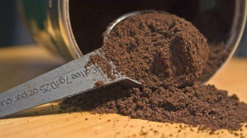 Ζέστη και υγρασία φέρνουν τις… κατσαρίδες στο σπίτι – Το κόλπο με τον καφέ για να τις διώξετε!