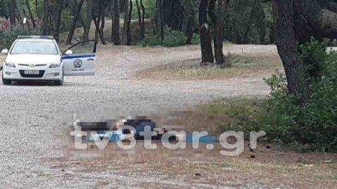 Άγριο έγκλημα στη Φθιώτιδα: Τον έδειραν, τον μαχαίρωσαν και τον πάτησαν με αυτοκίνητο!