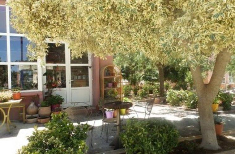 Το χωριό της Κρήτης που προσφέρει σπίτι και δουλειά όσους θέλουν να ζήσουν εκεί