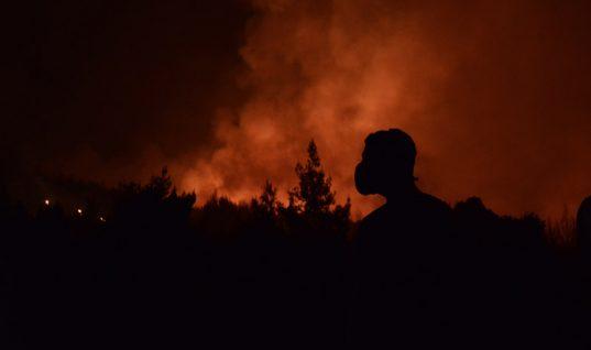 Μεγάλη φωτιά στην Αττική: Στο Καπανδρίτι η μάχη με τις φλόγες