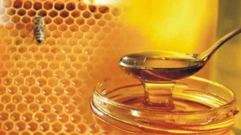 Ανακαλεί γνωστό μέλι ο ΕΦΕΤ
