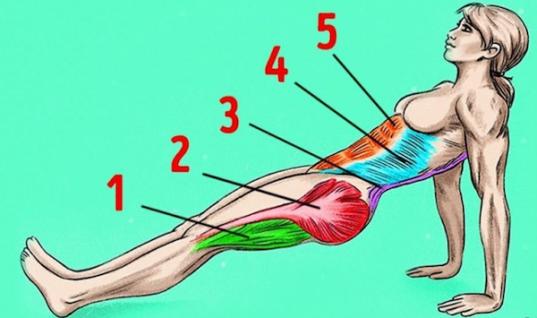 Αντίστροφη σανίδα: Κάνε την άσκηση για 1 λεπτό τη μέρα και θα εκπλαγείς με τα αποτελέσματα!