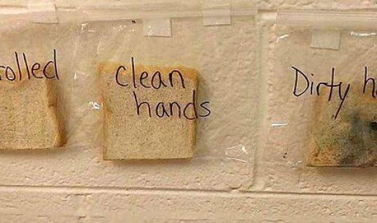 Το πείραμα αυτής της δασκάλας θα πείσει κάθε παιδί να πλένει τα χέρια του πριν το φαγητό!