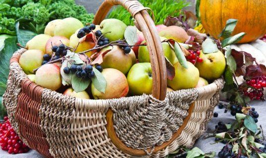 5 φθινοπωρινές τροφές που βοηθούν το μεταβολισμό και ενισχύουν την απώλεια βάρους