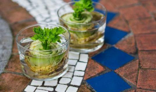 12 λαχανικά και μυρωδικά που ξαναμεγαλώνουν συνεχώς