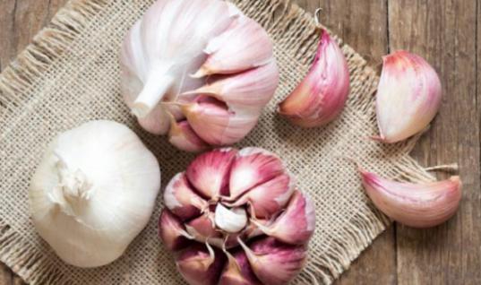 5 βότανα και μπαχαρικά που ελέγχουν την χοληστερόλη