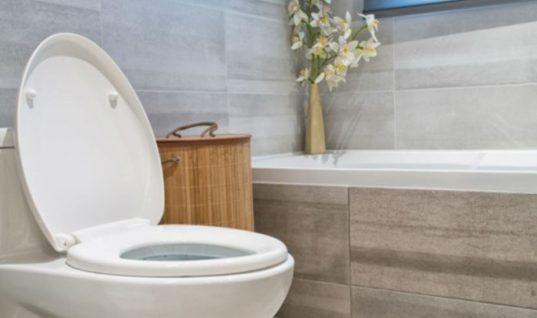 Αυτά είναι τα πράγματα που δεν πρέπει να ρίχνετε στην τουαλέτα!