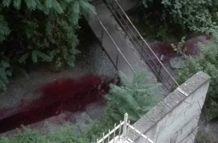 Ανεξήγητο φαινόμενο στη Θεσσαλονίκη -Ρέει κόκκινο ποτάμι και βάφει το μπετόν (εικόνες & βίντεο)