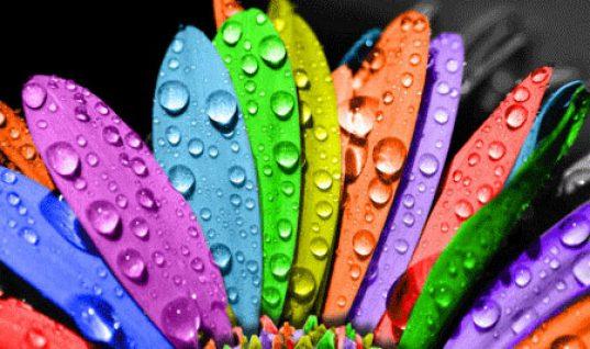 Τι συμβολίζουν τα χρώματα;- Όσα υποδηλώνει το αγαπημένο σου χρώμα