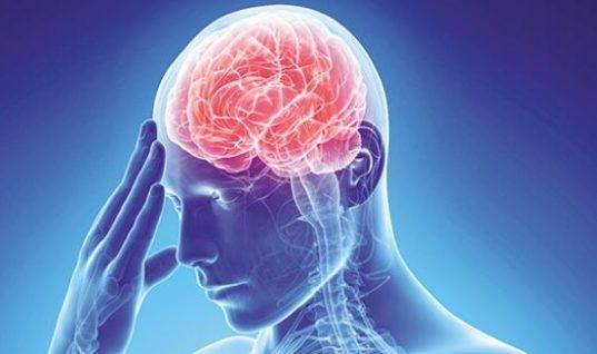 Ποια εποχή του χρόνου ο εγκέφαλος λειτουργεί καλύτερα από ποτέ