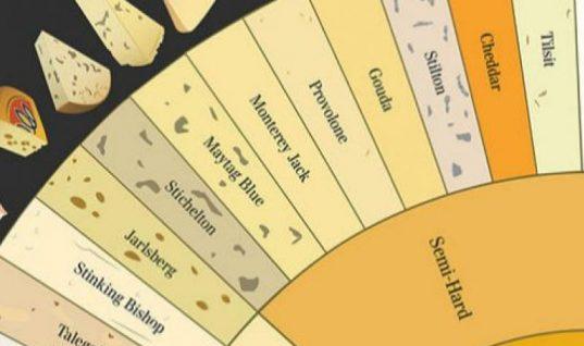 Πώς κατατάσσονται τα τυριά ανάλογα με τη σκληρότητα και την υφή τους