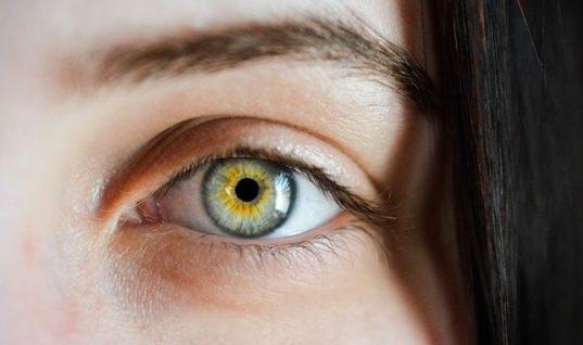Πρωτοφανές: Μέλισσες ζούσαν μέσα στο μάτι 20χρονης και τρέφονταν από τα δάκρυά της