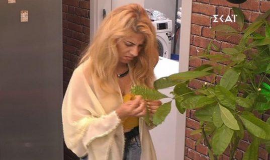 Μυθική σκηνή στο Big Brother: Παίκτρια πότιζε τα ψεύτικα λουλούδια του σπιτιού! (vid)
