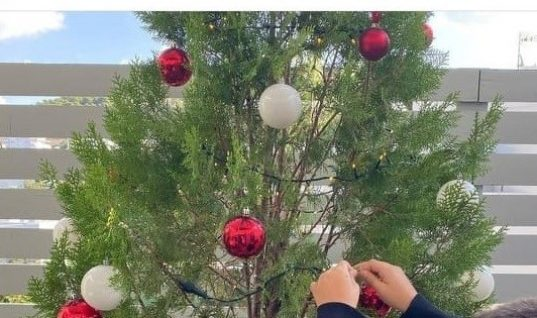 Όμορφη φωτογραφία: O Γιώργος Λιάγκας στολίζει με τους γιους του το χριστουγεννιάτικο δέντρο!