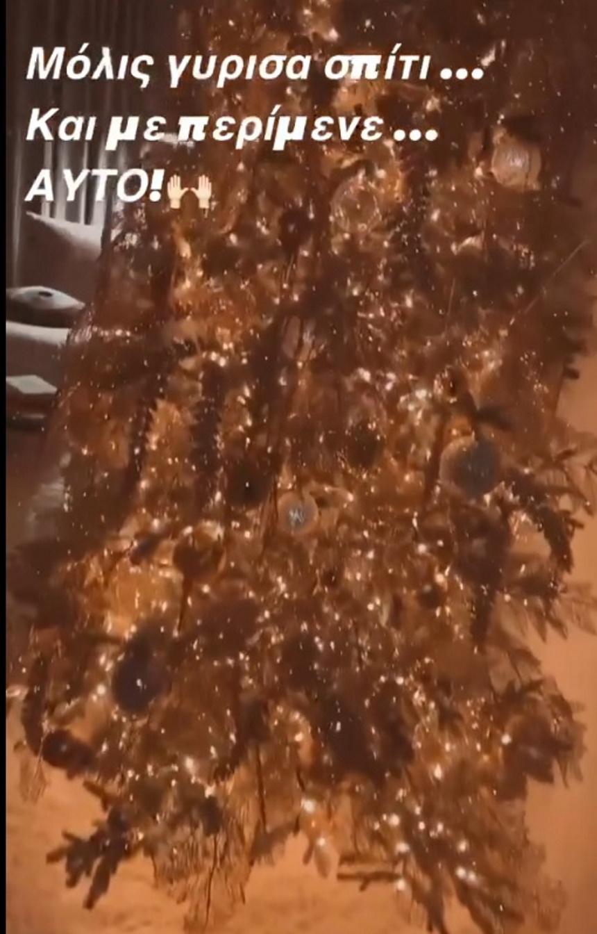 Κατερίνα Καινούργιου: Μας δείχνει το χριστουγεννιάτικο δέντρο της! (εικόνες)
